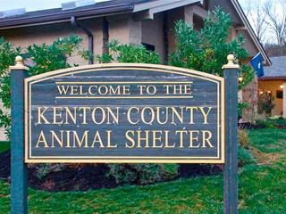 Kenton_County_animal_shelter_facebook_1440791701571_23339411_ver1.0_320_240